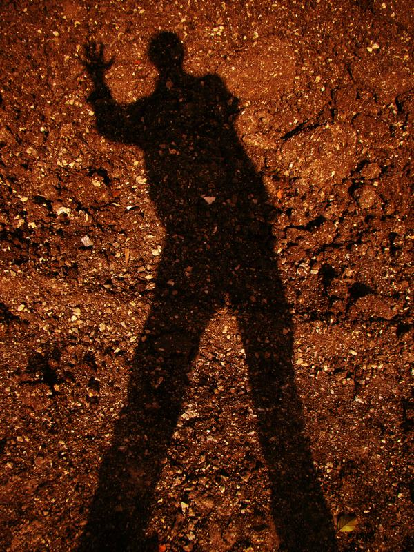 shadow-start